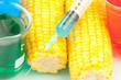 Syringe on corn