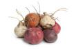 Fresh mixed color beets