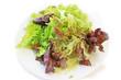 Teller mit Blattsalat