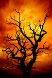 dead tree with a red and orange sky for Halloween