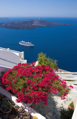 bougainvillea on terrace over Santorini caldera