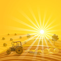 Harvesting on the sunny background