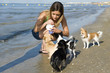 chihuahuas and girl on the beach