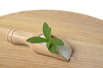 stevia rebaudiana on wooden background