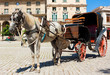 Horse carriage in Old Havana