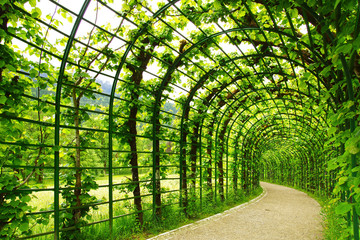 Alley Park in the Linderhof Palace.