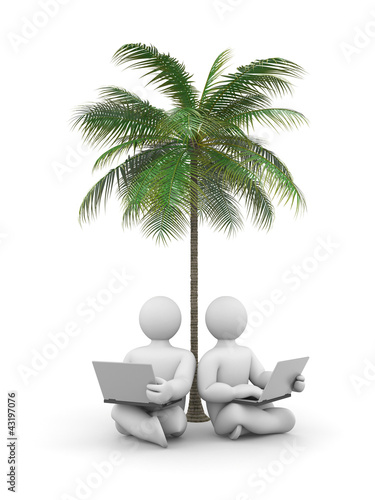 Person working or relax on laptop under a palm tree