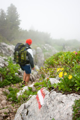 Mountaineering in the Alps - hiker walking down a hiking trail