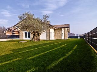 villa moderna con muri di pietra e un ulivo nel giardino