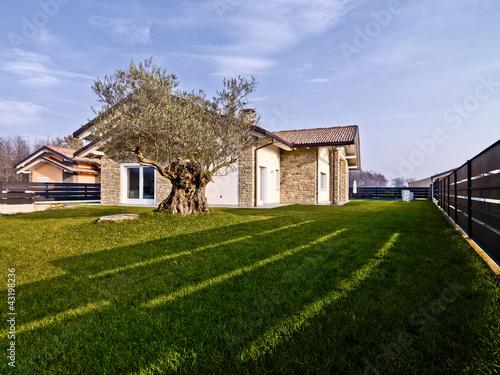 Villa moderna con muri di pietra e un ulivo nel giardino for Giardino villa moderna