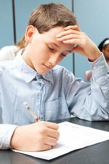 Adolescent Boy in Class