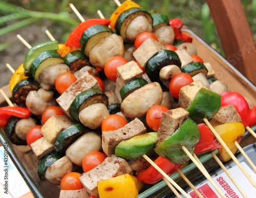 Fresh vegetable Kebabs with tofu, peppers, mushrooms