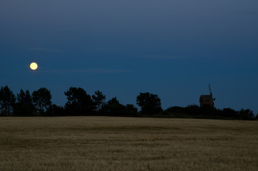 Moon over windmill and a cornfield