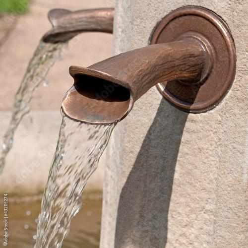 Wasserspeier - 43205274