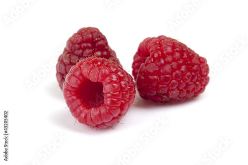 Red Raspberry - Himbeeren