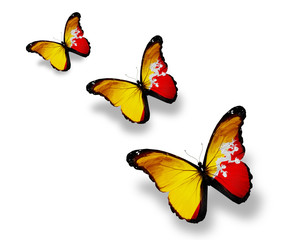 Three Bhutan flag butterflies, isolated on white