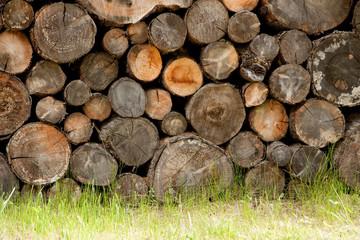 altes brennholz