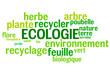 Nuage de Mots : Ecologie