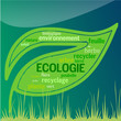 Feuille Ecologie