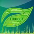 Feuille Ecologie