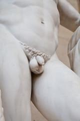 Body details - penis