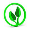 Die grüne Zukunft