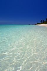 透明なサンゴの海と紺碧の空