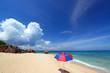 南国沖縄の綺麗なビーチと夏雲