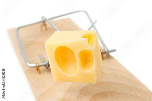Cheese in a mousetrap