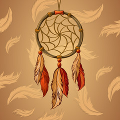 Vector Dream Catcher with the background of feathers