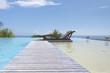 piscine à débordement avec ponton d'accès