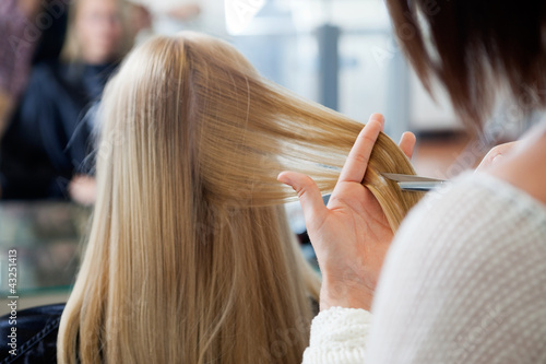 Woman Receiving Haircut