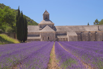 Sénanque Abbey (Provence, France)