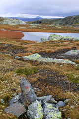 Landschaft in der Hardangervidda in Norwegen