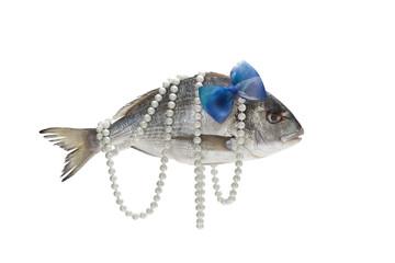 süslü balık 02