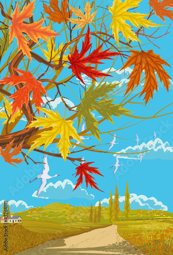 Rural autumn landscape with maple leaves
