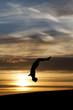 silhouette of gymnast in sunset