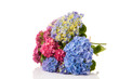 Bouquet pink and blue Hydrangea