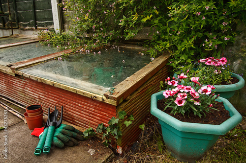 Gardeners cold frame - 43275263
