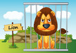 lion in cage