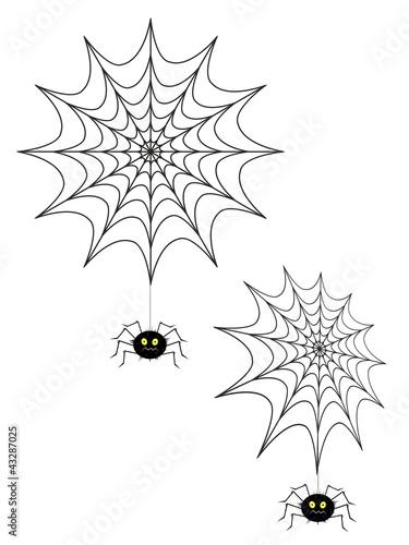 Spinnennetzt mit Spinne