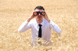 Business Man with binocular
