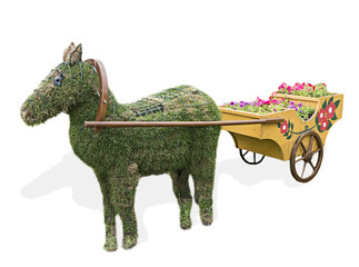 horse, made of turf