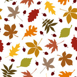 Fototapety Autumn Color Leafs & Acorns Seamless Pattern