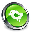 Tweety bird icon 3D green button