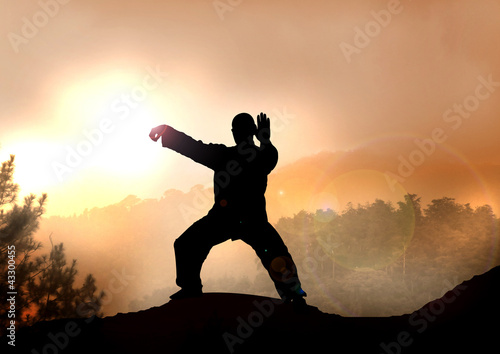 Stock Illustration of Tai Chi on Mountain