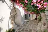 Fototapety Small backstreet on Amorgos island, Greece