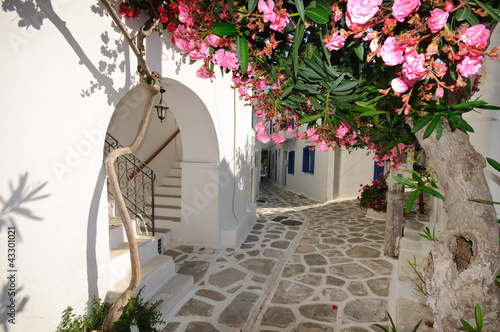 Small backstreet on Amorgos island, Greece © great_photos