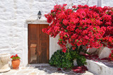 Traditional greek doors with red flowers in front - 43302019
