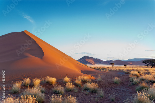 Beautiful sunset dunes Namib desert, Sossusvlei, Namibia - 43302021